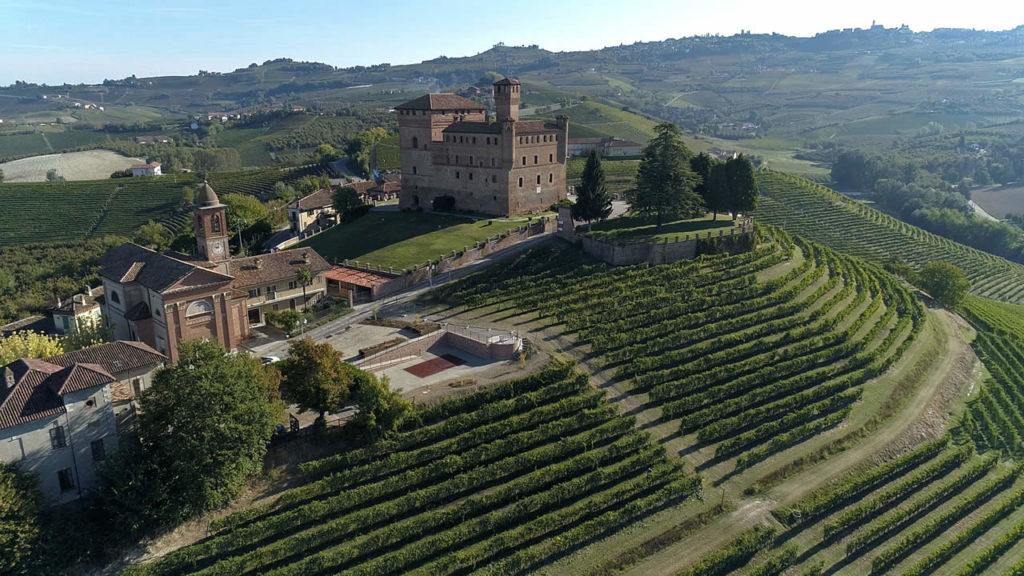 Vini d'Oro. Piemonte
