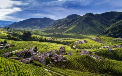 Vini d'Oro. Veneto