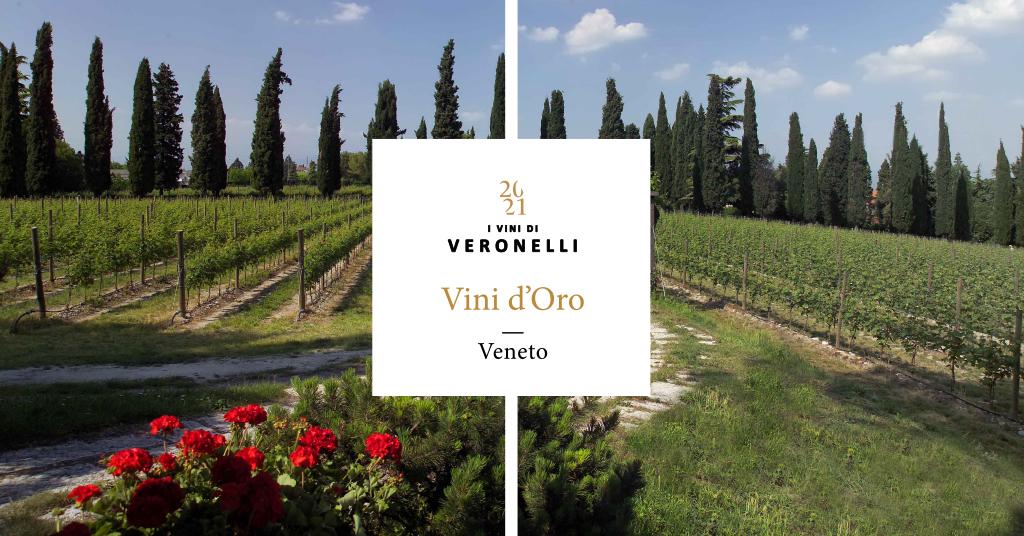 VENETO Vini d'Oro / 1