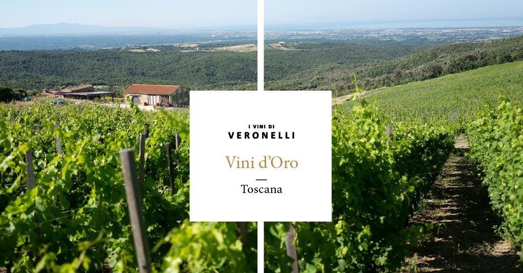 Si Costa Toscana Rosato 2019 DueMani